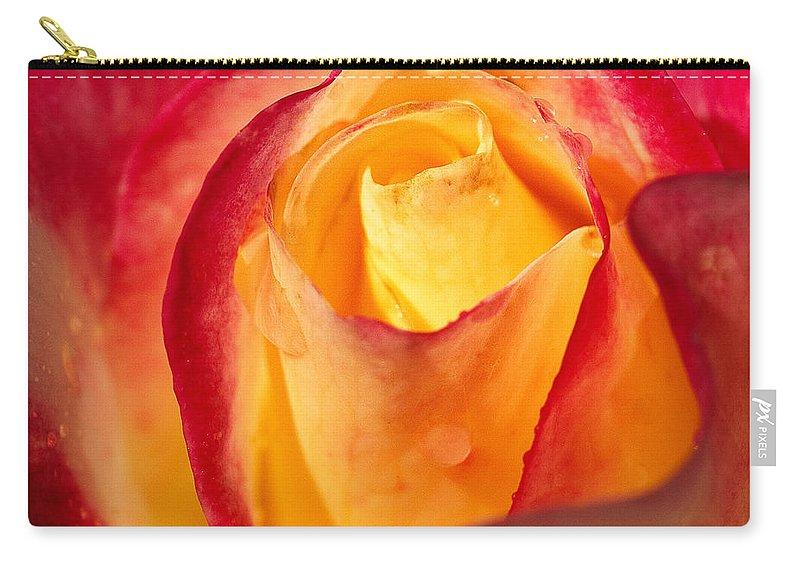 Bloom Carry-all Pouch featuring the photograph Rose by Joe Mamer