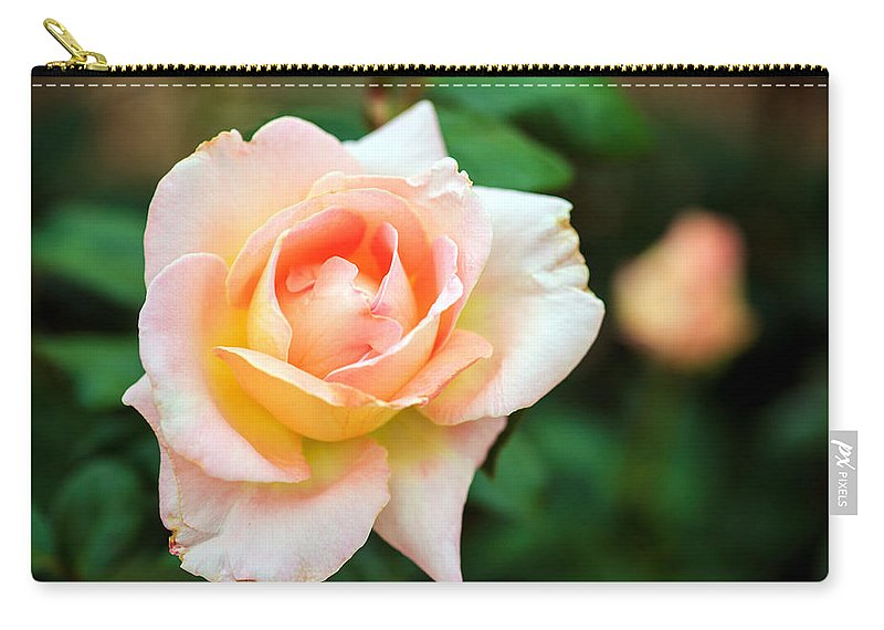Bumble Bee Carry-all Pouch featuring the photograph Rose by Sennie Pierson