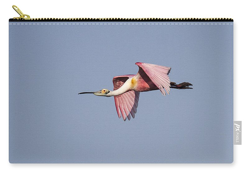 Doug Lloyd Carry-all Pouch featuring the photograph Roseate Spoonbill by Doug Lloyd