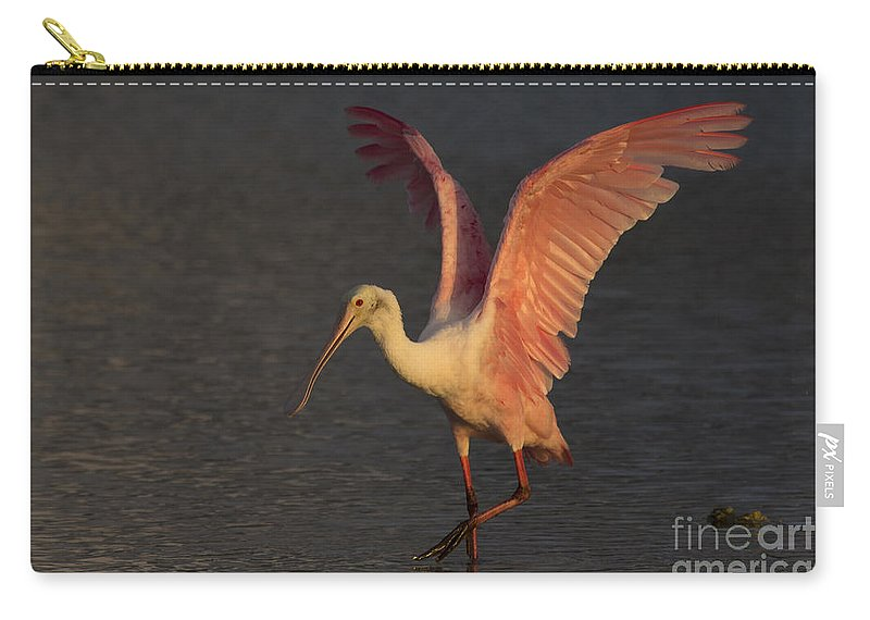 Roseate Spoonbill Carry-all Pouch featuring the photograph Roseate Spoonbill Photograph by Meg Rousher