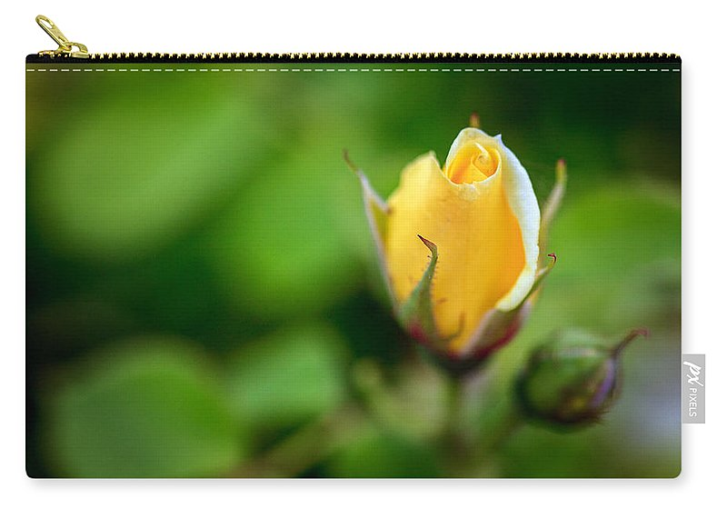 Bumble Bee Carry-all Pouch featuring the photograph Rosebud by Sennie Pierson