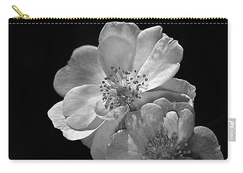 Roses On Black Carry-all Pouch featuring the photograph Roses On Black by Joy Watson