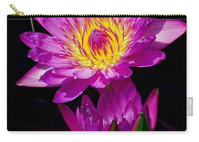 Aquatic Carry-all Pouch featuring the photograph Royal Lily by Nick Zelinsky