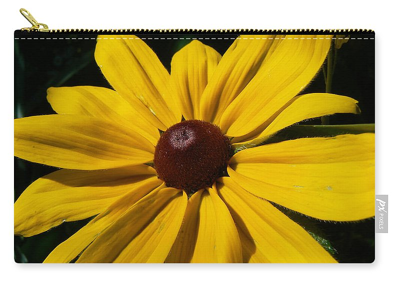 Black Eye Susan Carry-all Pouch featuring the photograph Rudbeckia Macro by Barbara St Jean