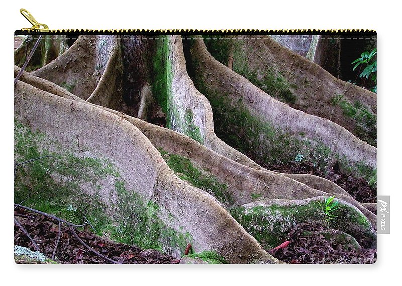 Rudraksha Carry-all Pouch featuring the photograph Rudraksha 2 by Mary Deal