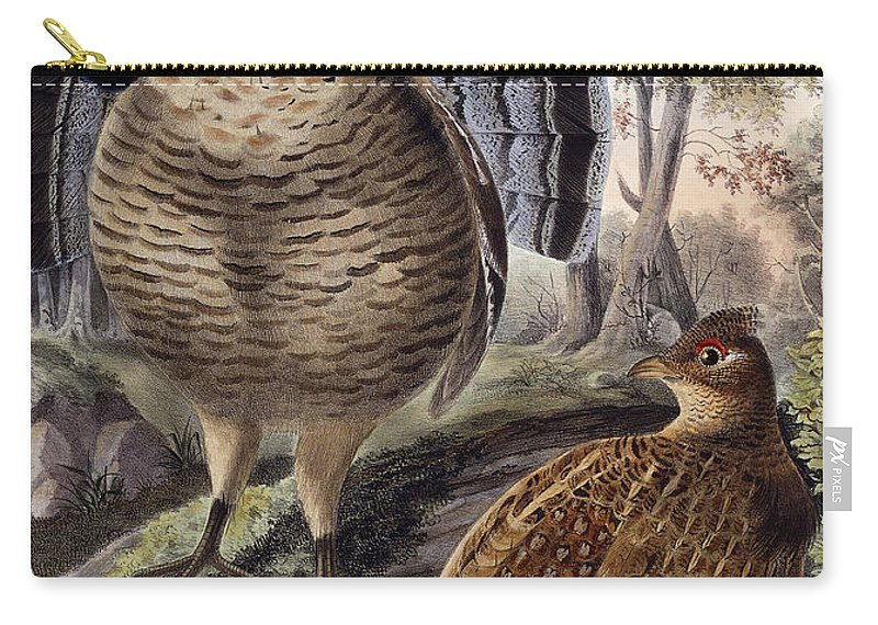 Grouse Carry-all Pouch featuring the painting Ruffed Grouse by Daniel Girard Elliot