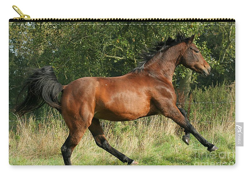 Horse Carry-all Pouch featuring the photograph run by Angel Ciesniarska