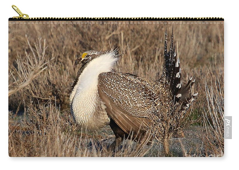 Sage Grouse Carry-all Pouch featuring the photograph Sage Grouse by Marty Fancy
