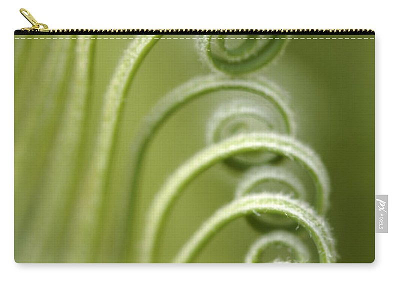 Sago Plam Carry-all Pouch featuring the photograph Sago Palm Fronds by Neil Overy