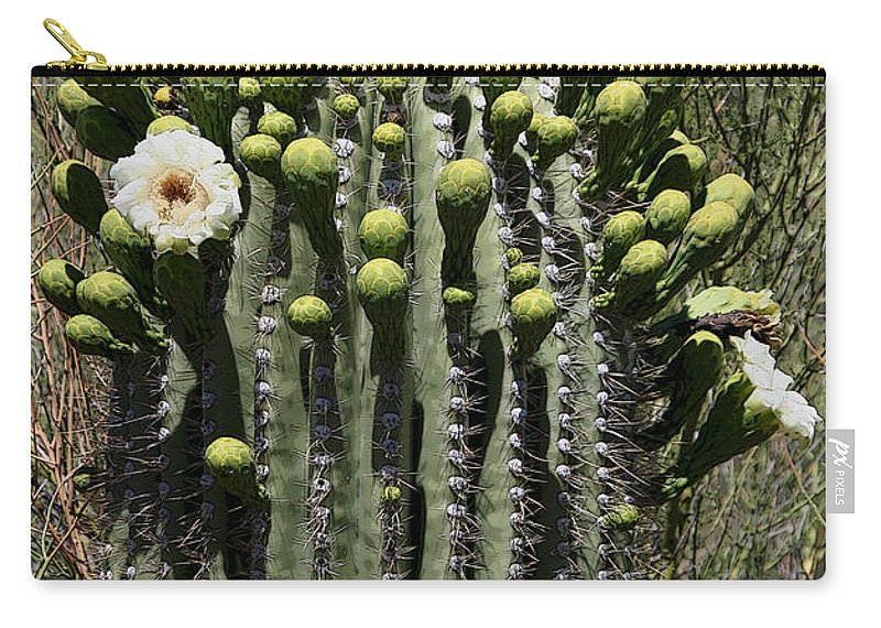 Saguaro Carry-all Pouch featuring the photograph Saguaro In Bloom by Joe Kozlowski