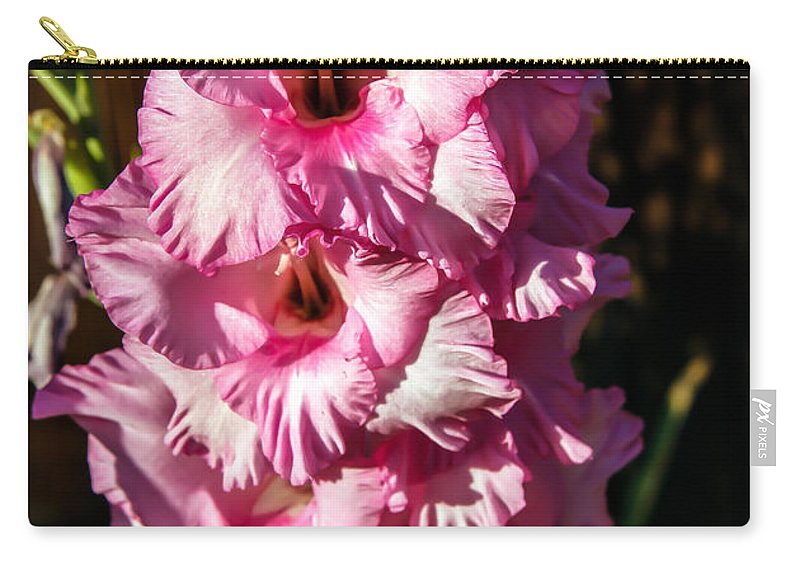 Flower Carry-all Pouch featuring the photograph Salmon Color Glad by Robert Bales