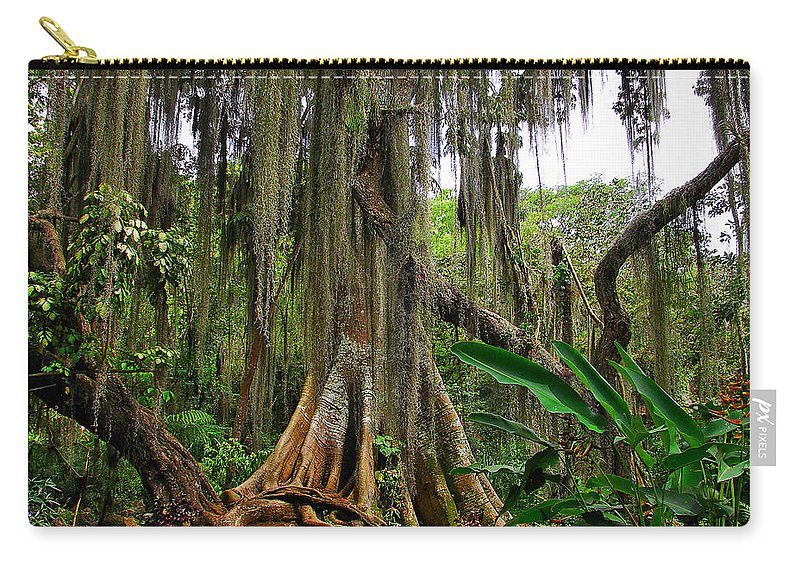 Spanish Moss Carry-all Pouch featuring the photograph San Gil by Blair Wainman