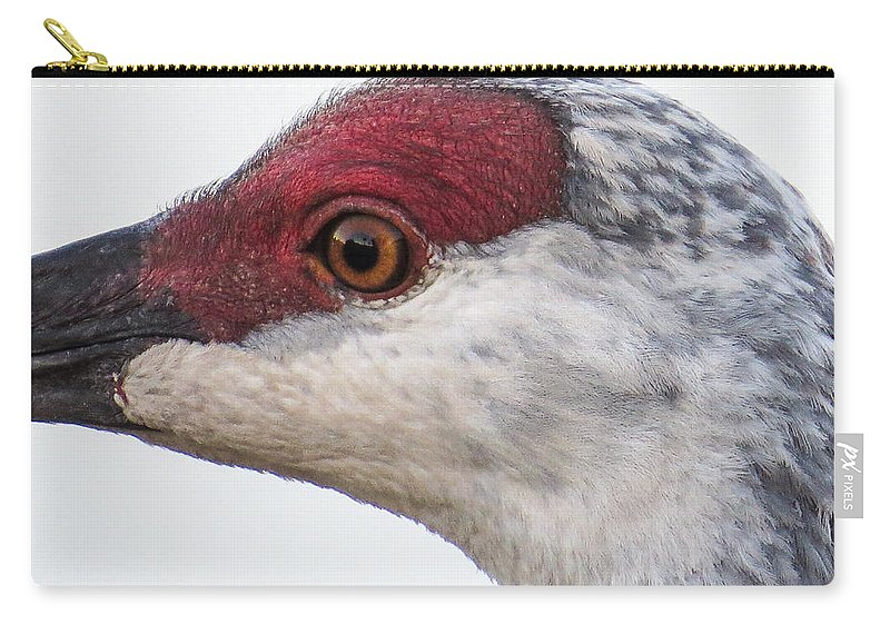 Sandhill Crane Carry-all Pouch featuring the photograph Sandhill Crane Eye by Zina Stromberg