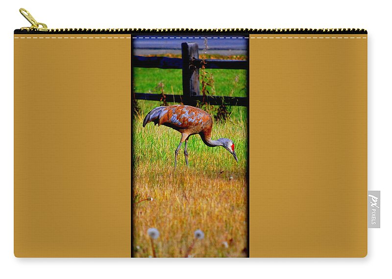Migratory Carry-all Pouch featuring the photograph Sandhill Crane by Kathy Sampson