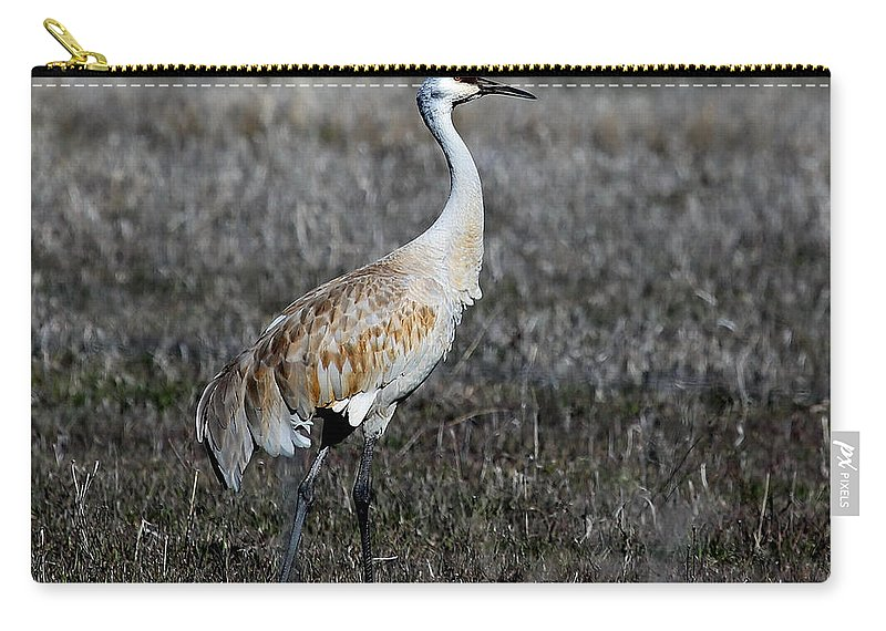 Sandhill Crane Carry-all Pouch featuring the photograph Sandhill Crane by Marty Fancy