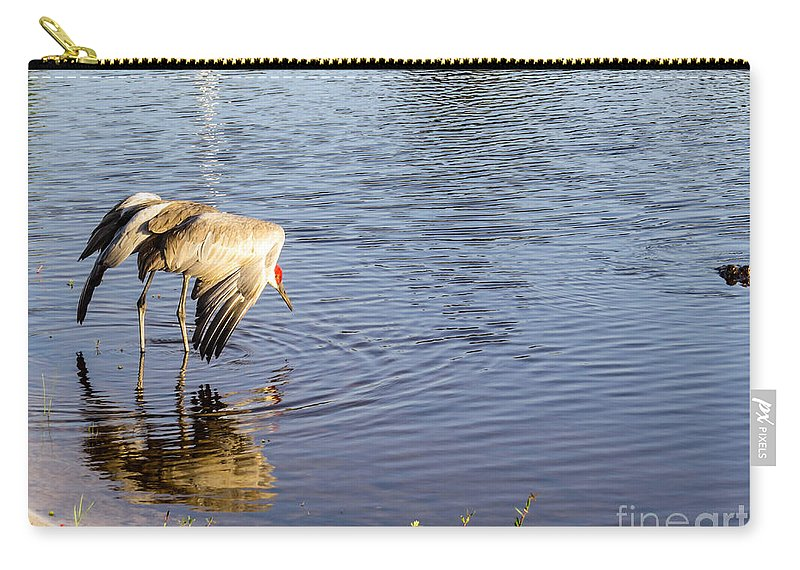 Sandhill Crane Carry-all Pouch featuring the photograph Sandhill Crane Vs Alligator by Zina Stromberg
