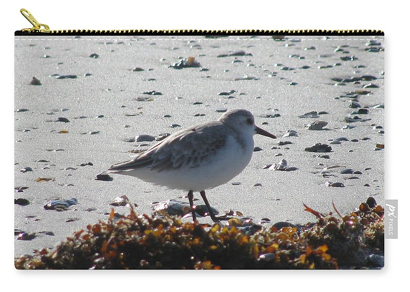 Landscape Carry-all Pouch featuring the photograph Sandpiper And Seaweed by Ellen Meakin