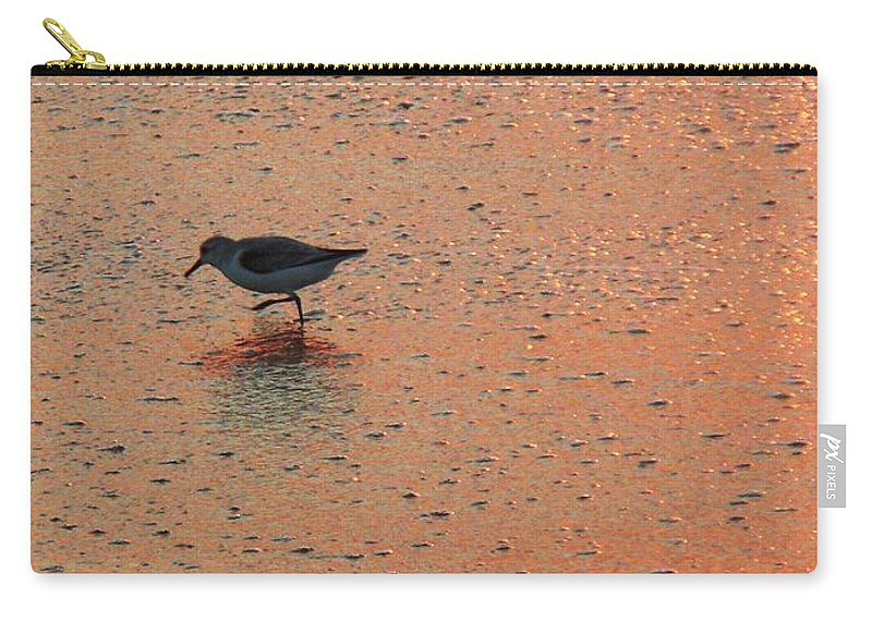 Beach Carry-all Pouch featuring the photograph Sandpiper On Shoreline by Eric Schiabor