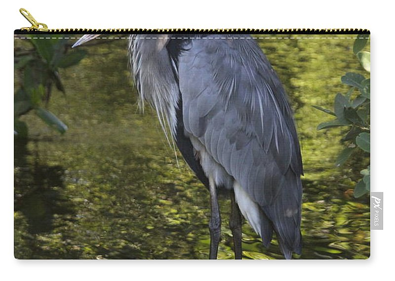Great Blue Heron Carry-all Pouch featuring the photograph Sanibel Great Blue Heron by Christiane Schulze Art And Photography