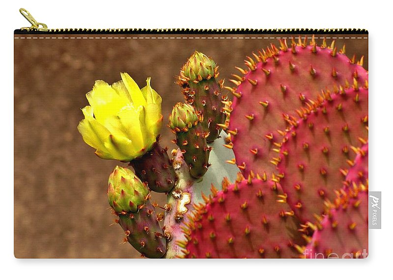 Plant Carry-all Pouch featuring the photograph Santa Rita Cactus by Marilyn Smith