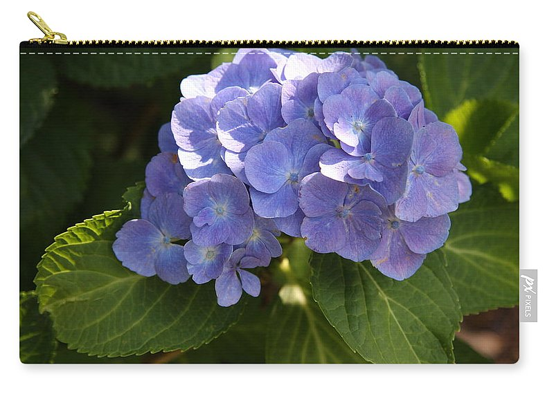 Hydrangea Carry-all Pouch featuring the photograph Sapphire Dream by Christiane Schulze Art And Photography