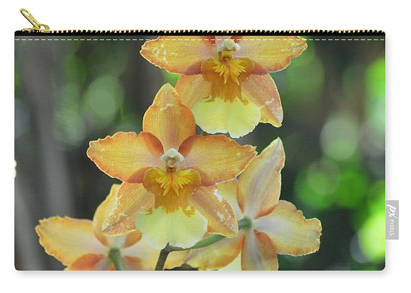 Satyrion Carry-all Pouch featuring the photograph Satyrion by Sonali Gangane