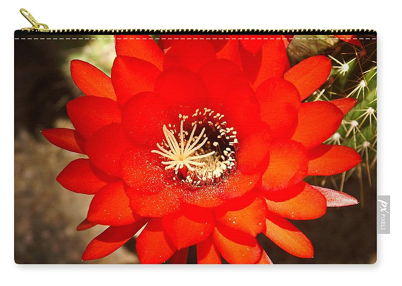 Flower Carry-all Pouch featuring the photograph Scarlet by Kent Nancollas
