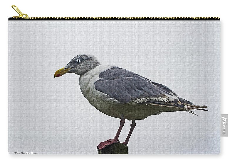 Sea Gull Carry-all Pouch featuring the photograph Sea Gull On The Dock On A Foggy Day by Tom Janca