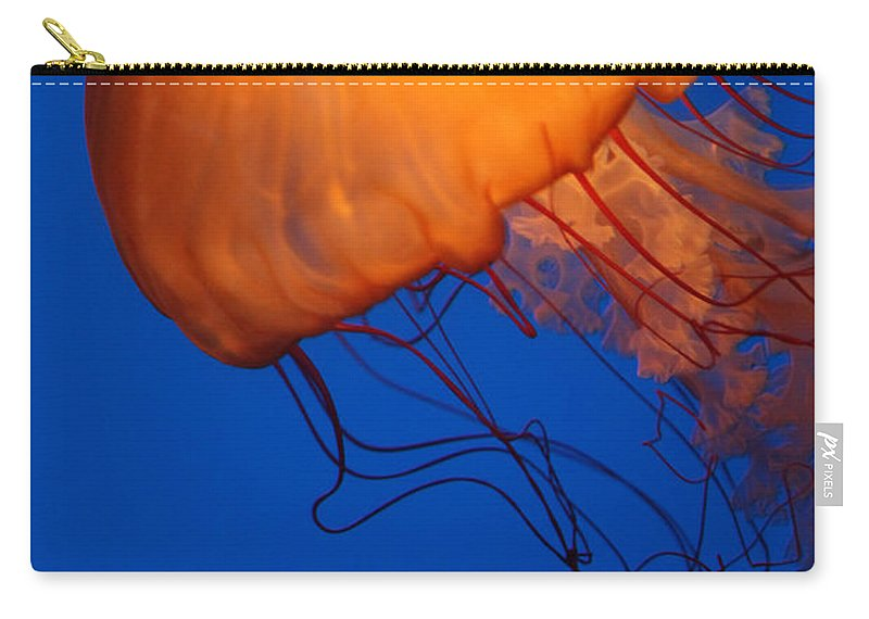 Sea Nettles Carry-all Pouch featuring the photograph Sea Nettles by Donna Corless