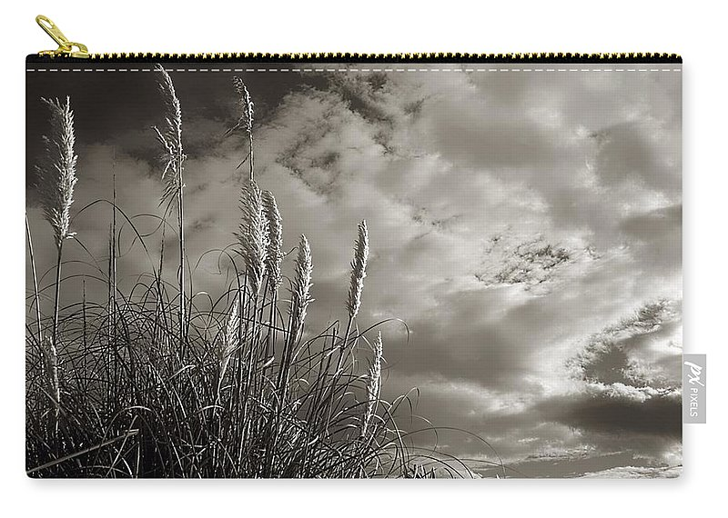 Sea Oates Carry-all Pouch featuring the photograph Sea Oats by Debra Forand