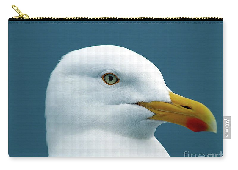Fine Art Print Carry-all Pouch featuring the photograph Seagull I by Patricia Griffin Brett
