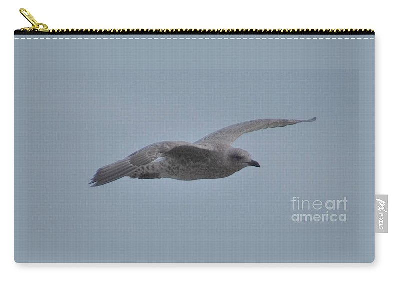 Seagull In Flight Graceful Bird Art Nature Shot Serenity Yorkshire Grey Feathers Outdoors English Fauna Movement Panoramic Format Minimalism Metal Frame Canvas Print Wood Print Available On Greeting Cards T Shirts Mugs Pouches Shower Curtains Weekender Tote Bags Beach Towels Yoga Mats And Phone Cases Carry-all Pouch featuring the photograph Seagull In Flight # 2 by Marcus Dagan