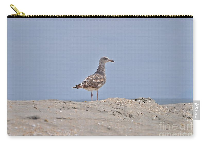 Seagull Carry-all Pouch featuring the photograph Seagull N Sand by Bridgette Gomes