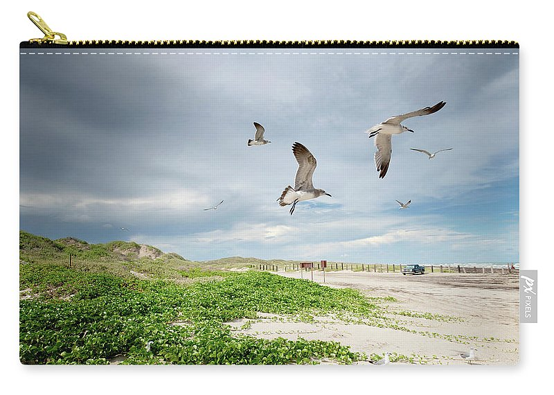 Scenics Carry-all Pouch featuring the photograph Seagulls In Flight At North Padre by Olga Melhiser Photography