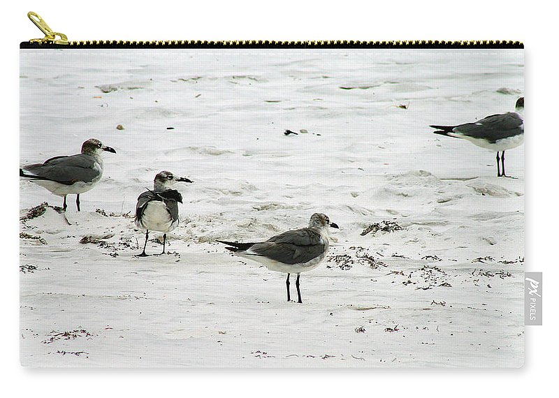Water Carry-all Pouch featuring the photograph Seagulls On The Beach by Karen Adams