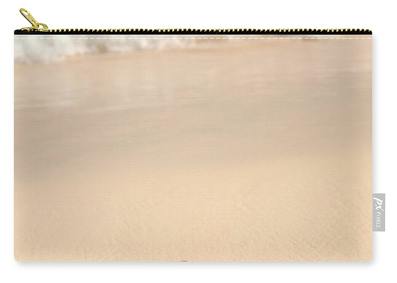 Seashell Carry-all Pouch featuring the photograph Seashell And Ocean Wave by Elena Elisseeva
