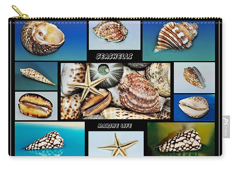 Photography Carry-all Pouch featuring the photograph Seashell Collection 2 by Kaye Menner