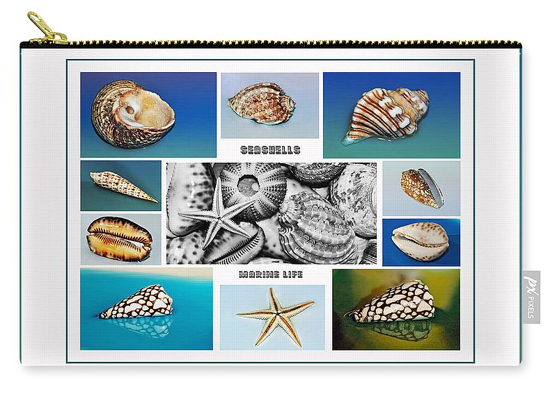 Photography Carry-all Pouch featuring the photograph Seashell Collection 3 - Collage by Kaye Menner