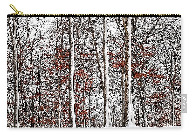 Season Carry-all Pouch featuring the photograph Seasons Converge by Frozen in Time Fine Art Photography