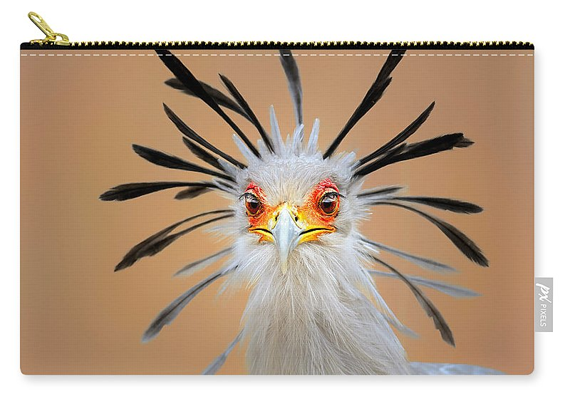 Bird Carry-all Pouch featuring the photograph Secretary bird portrait close-up head shot by Johan Swanepoel