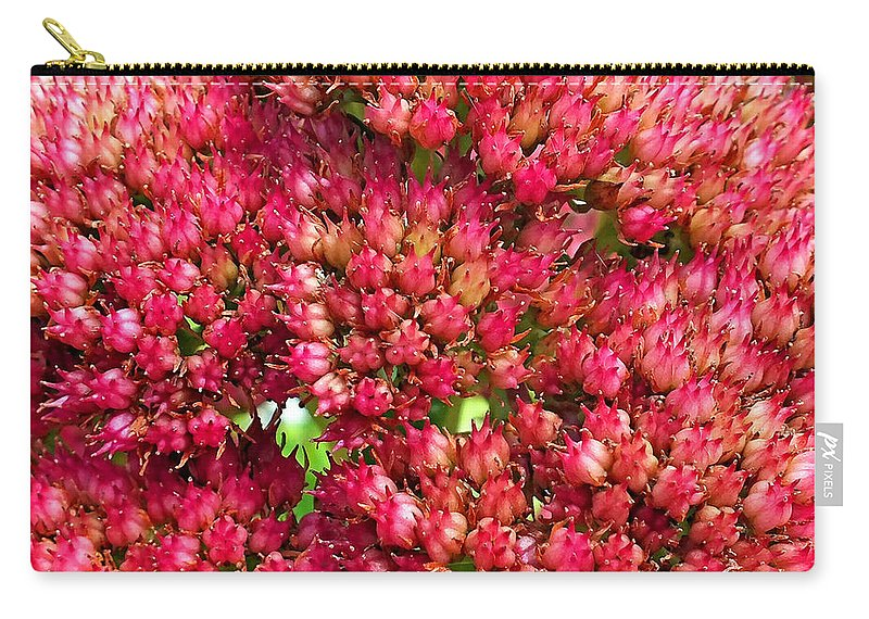 Duane Mccullough Carry-all Pouch featuring the photograph Sedums Upclose Filtered by Duane McCullough