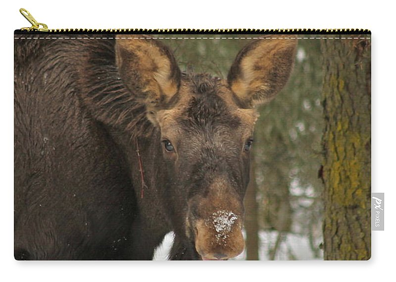 Moose Carry-all Pouch featuring the photograph See You by Rick Monyahan