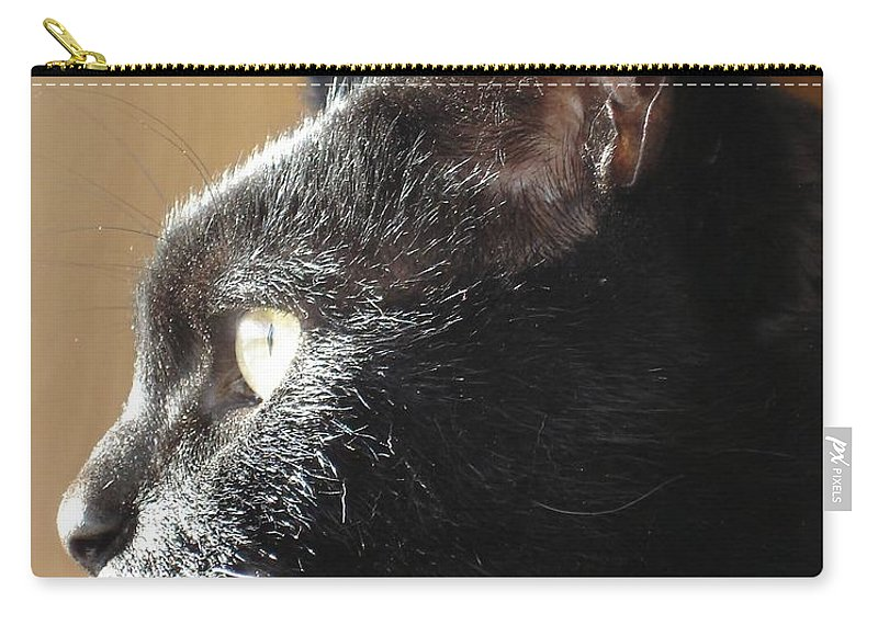 Black Carry-all Pouch featuring the photograph Seesa by Kerri Mortenson