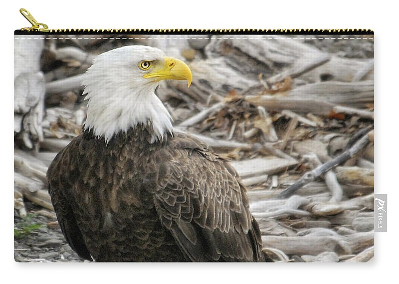 Bald Eagle Carry-all Pouch featuring the photograph Serious by Claudia Kuhn