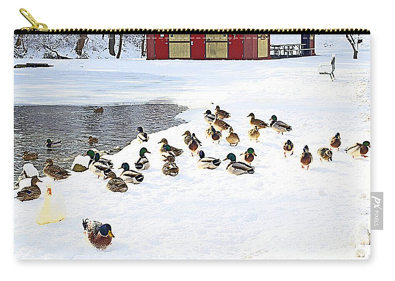 Duck Carry-all Pouch featuring the photograph Seriously? Go Into The Water? by Luther Fine Art