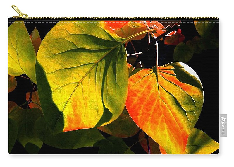 Shades Carry-all Pouch featuring the photograph Shades And Shadows by Will Borden