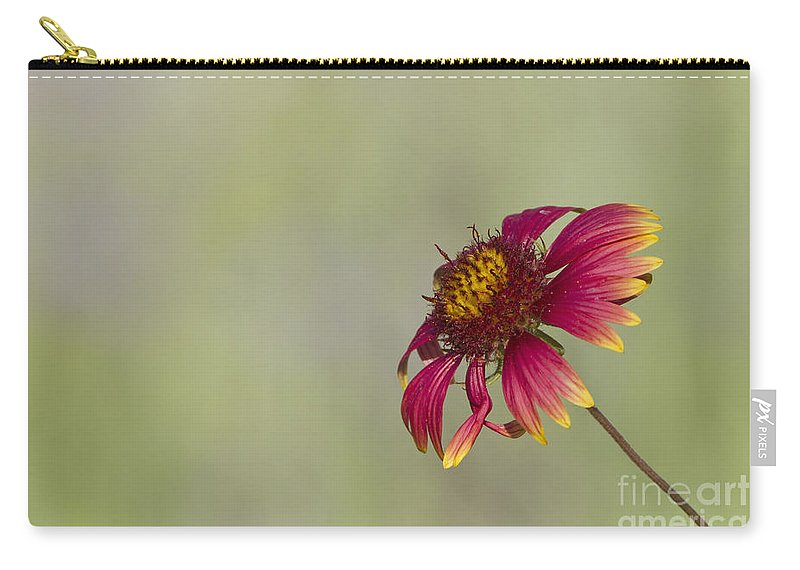Flower Carry-all Pouch featuring the photograph Shades Of Beauty by Bryan Keil
