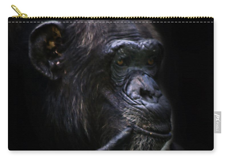 Primates Carry-all Pouch featuring the photograph Shadow Series Three by Ken Frischkorn