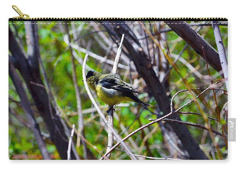 Branch Carry-all Pouch featuring the photograph Shake It Out by Brent Dolliver