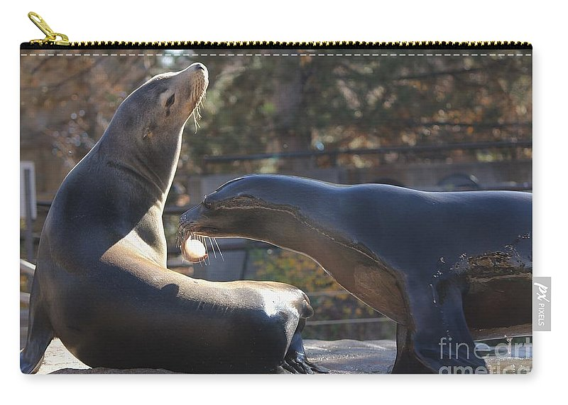 Seals Carry-all Pouch featuring the photograph Sharing by Tonya Hance
